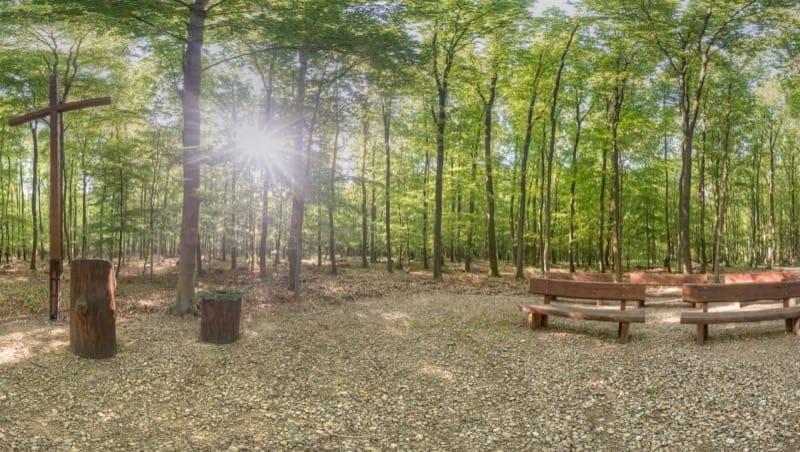 Andachtsplatz im FriedWald Meroder Wald, Foto: FriedWald