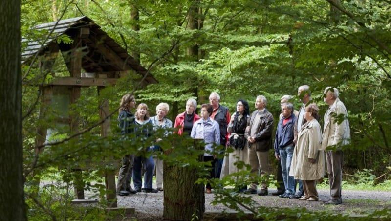Waldführung im FriedWald Uetzer Herrschaft, Foto: FriedWald